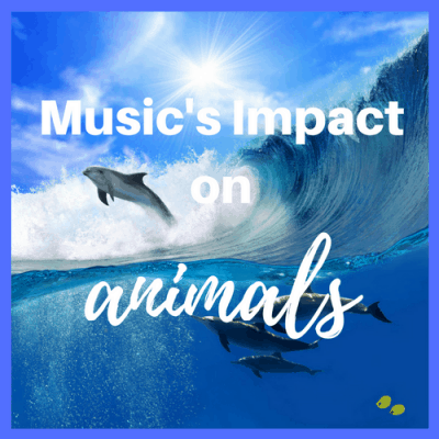 Music's Impact on Animals
