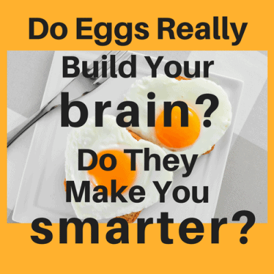 Do Eggs Really Build Your Brain? Do They Make You Smarter?