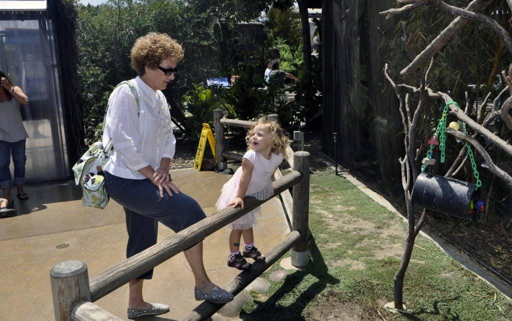 becoming super grandparent, good grandparenting brighter children, grandparents, relationship with grandkids