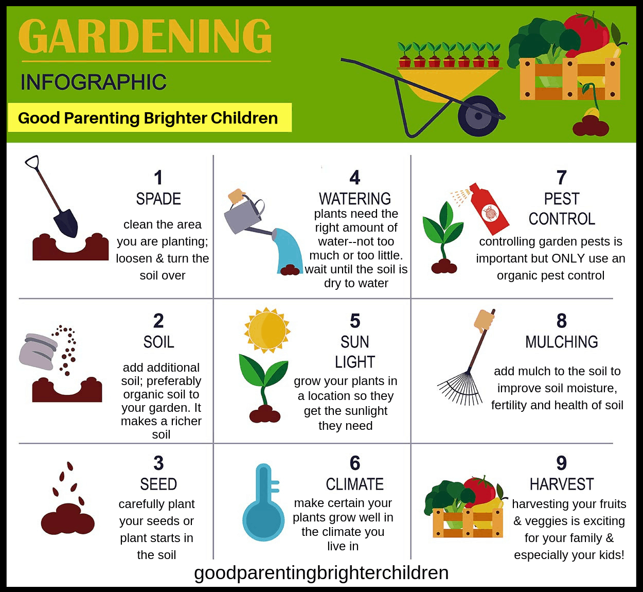 Image result for gardening for kids infographic