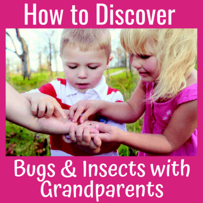 How to Discover Bugs and Insects with Grandparents